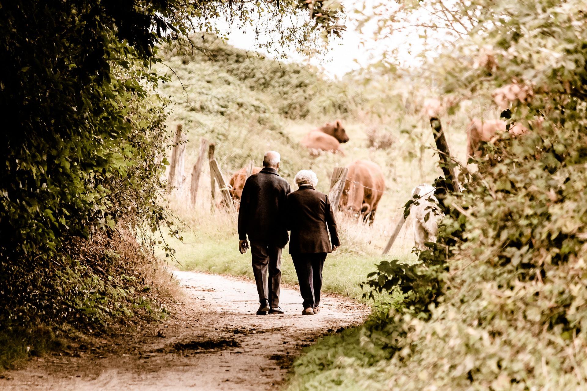 Wednesday 16 september - Walk: Chéoux-Menil